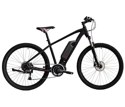 E-Green STEPS M1 Electric Bike